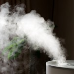 Indoor Air Quality in Southern NJ