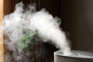 Humidifiers image, Indoor Air Quality image, Air Conditioning image